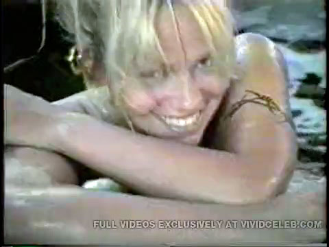 Pamela Anderson And Tommy Lee Porn photo 10